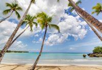Un ambiente tropical en Playa bonita