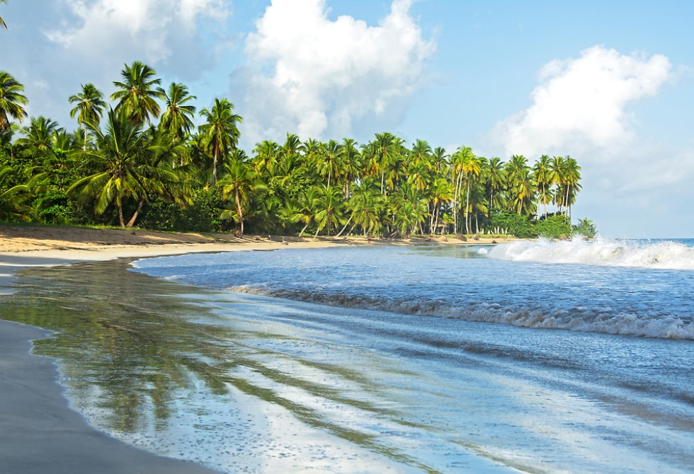 Playa Cosón is a paradise where you can relax your eyes