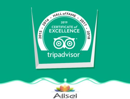 Alisei Hotel is synonymous of excellence.